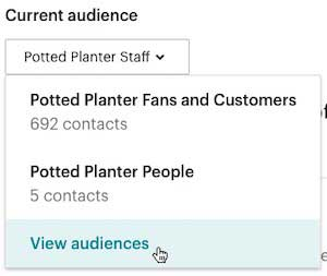 mailchimp-view audience